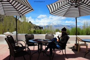 offbeat stay in Leh